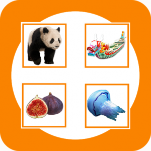 Match + Read Icon Educational Games